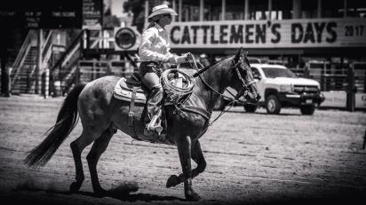 RodeoThing-0049