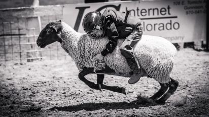 RodeoThing-0096