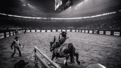 RodeoThing-0280
