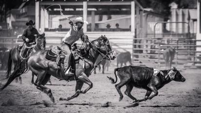 RodeoThing-0332
