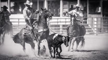 RodeoThing-0337