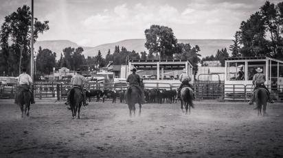 RodeoThing-0357