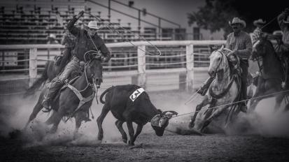 RodeoThing-0369
