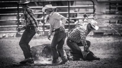 RodeoThing-0411