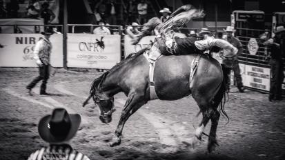 RodeoThing-0430