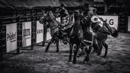 RodeoThing-0599