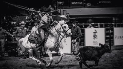 RodeoThing-0745