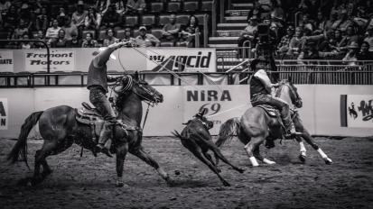 RodeoThing-0765
