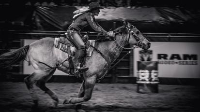 RodeoThing-0852
