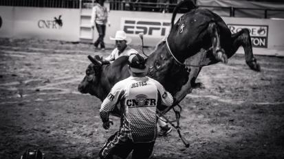 RodeoThing-0889