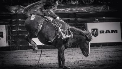 RodeoThing-1259