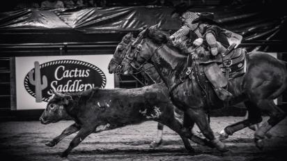 RodeoThing-1420