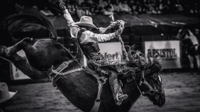 RodeoThing-1644