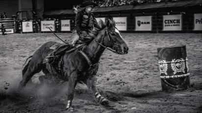 RodeoThing-2174
