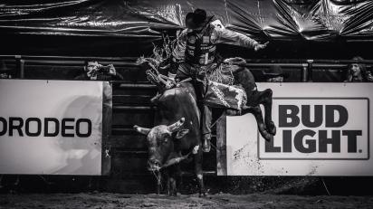RodeoThing-2538