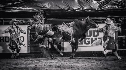 RodeoThing-2545-2