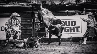 RodeoThing-2549