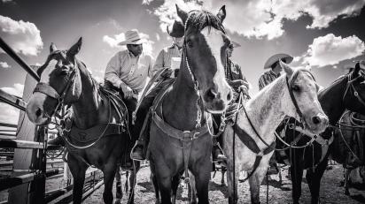 RodeoThing-2733