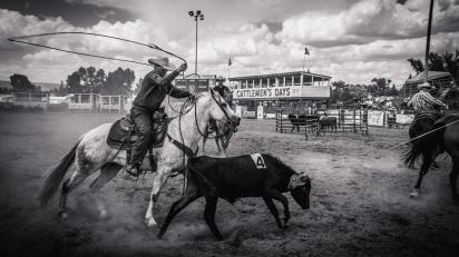 RodeoThing-2812