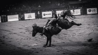 RodeoThing-2838