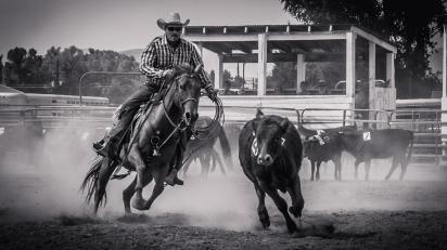 RodeoThing-2876
