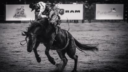 RodeoThing-2883