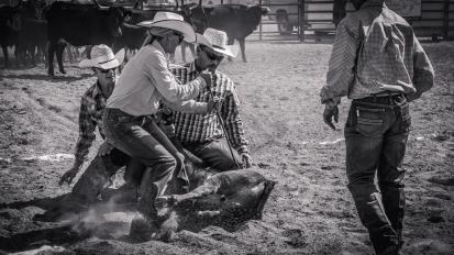 RodeoThing-2975