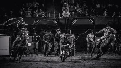 RodeoThing-3044