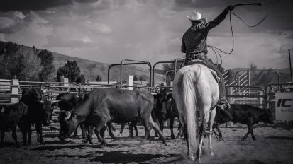 RodeoThing-3060