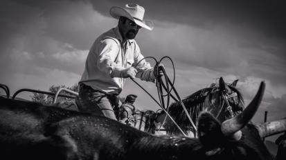 RodeoThing-3119