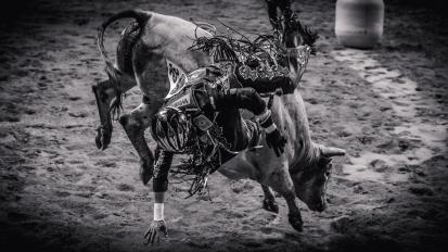 RodeoThing-3410