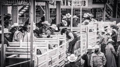 RodeoThing-3562