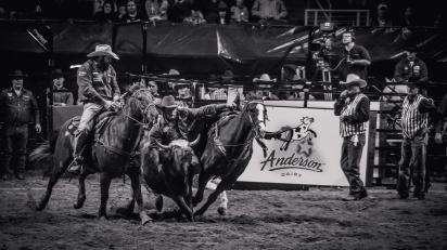 RodeoThing-3571