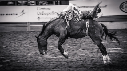 RodeoThing-3580