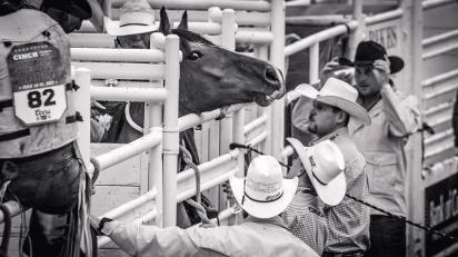 RodeoThing-3660