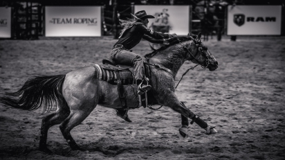 RodeoThing-3700