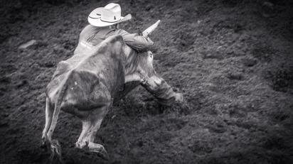 RodeoThing-3757