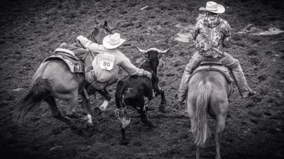 RodeoThing-3768