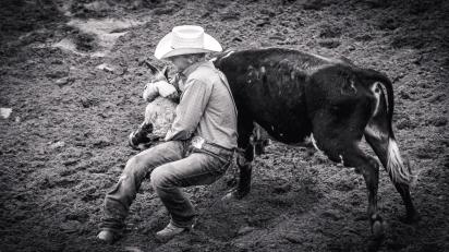 RodeoThing-3775