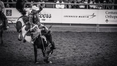 RodeoThing-3951