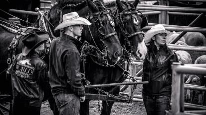 RodeoThing--4