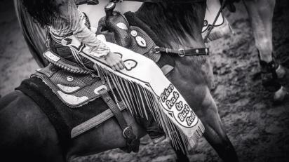 RodeoThing-4112