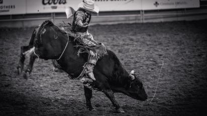 RodeoThing-4334