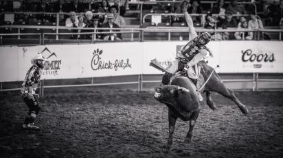 RodeoThing-4376
