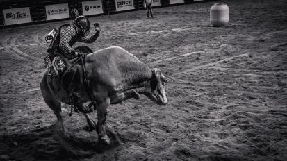 RodeoThing-9813