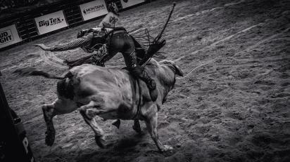RodeoThing-9814