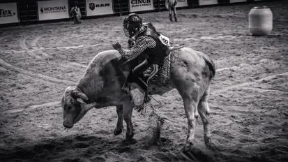 RodeoThing-9823